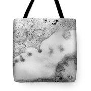 Rubella Virus Tote Bag by Science Source