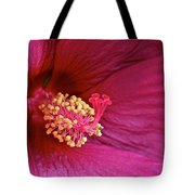 Ruby Hibiscus Tote Bag