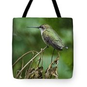 Ruby On The Perch Tote Bag