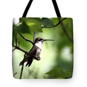 Ruby-throated Hummingbird - Shade Tote Bag