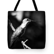 Ruby-throated Hummingbird - Signature Tote Bag