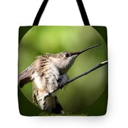 Ruby-throated Hummingbird  - The Stretch Tote Bag