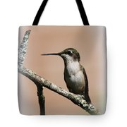 Ruby-throated Hummingbird - Totally Innocent Tote Bag