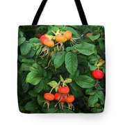 Rugosa Rose With Rose Hips Tote Bag