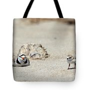 Run Little One  Piping Plover Tote Bag