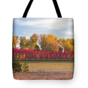 Rural Country Autumn Scenic View Tote Bag