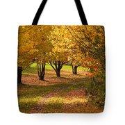 Rural Scene In Autumn Tote Bag