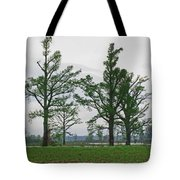Rural Trees Iv Tote Bag