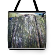 Rustic Boards Tote Bag