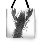Rusty Crayfish Tote Bag