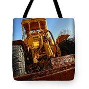 Rusty Gold Cat 824 Tote Bag