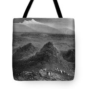 Sacramento Valley, C1846 Tote Bag