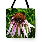 Sad Cone Flower Tote Bag