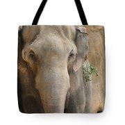Sad Elephant Tote Bag