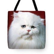 Sad Persian Cat Tote Bag