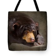 Sad Sun Bear Tote Bag