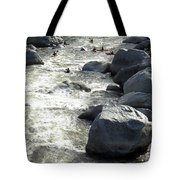 Safely Through The Boulders Tote Bag