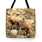 Safety In Numbers Tote Bag