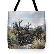 Sagebrush And Snow Tote Bag