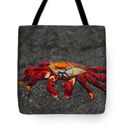 Sally Lightfoot Crab Tote Bag by Tony Beck