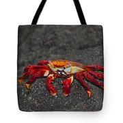 Sally Lightfoot Crab Tote Bag