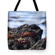 Sally Lightfoot Crabs Tote Bag