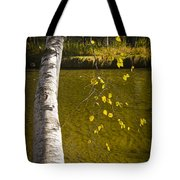 Salmon During The Fall Migration In The Little Manistee River In Michigan No. 0887 Tote Bag