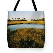 Salt Marsh, Assateague Island, Virginia Tote Bag