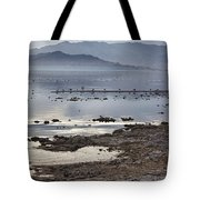 Salton Sea Birds Tote Bag