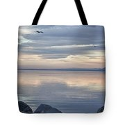 Salton Sea Sunset Tote Bag
