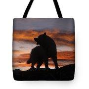 Samoyed At Sunset Tote Bag