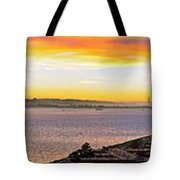San Francisco Bay Wide View Tote Bag
