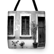 San Juan Living 2 Tote Bag by Perry Webster