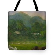 Sand Canyon Afternoon Tote Bag
