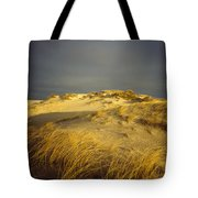 Sand Dunes And Beach Grass In Golden Tote Bag