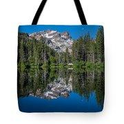 Sand Pond Tote Bag