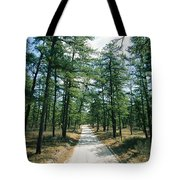 Sand Road Through The Pine Barrens, New Tote Bag