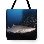 Sand Tiger Shark Swims By The Wreck Tote Bag
