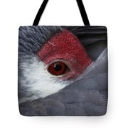 Sandhill Crane At Rest Tote Bag