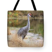 Sandhill Crane Beauty By The Pond Tote Bag