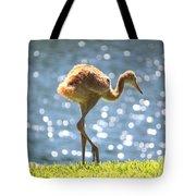 Sandhill Crane Daydreamer Tote Bag