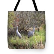 Sandhill Cranes In Colorful Marsh Tote Bag