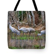 Sandhill Cranes In The Winter Marsh Tote Bag