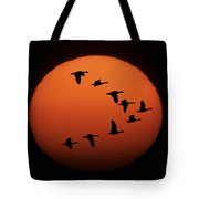 Sandhill Cranes Silhouetted Tote Bag
