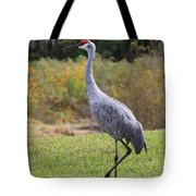 Sandhill In The Grass With Wildflowers Tote Bag