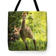 Sandhill Toddler Tote Bag