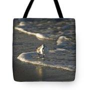 Sandpiper On Beach Tote Bag