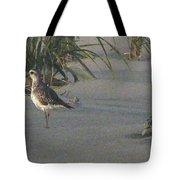 Sandpiper Stroll Tote Bag