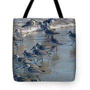 Sanderlings Tote Bag