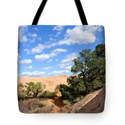 Sandstone Sky Tote Bag by Gary Whitton